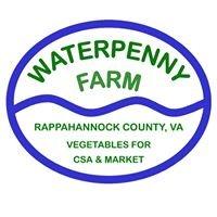 Waterpenny Farm