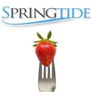 Springtide Digital Marketing