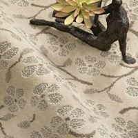 Distinctive Carpets and Rugs