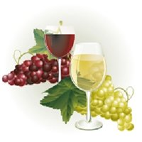 Indian Valley Public Library Wine Tasting