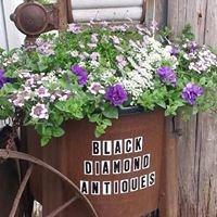 Black Diamond Antiques & More