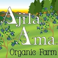 Ajila Ama Farms