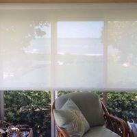 Shady Lady Window Treatments, Inc.