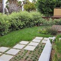 Bowman Landscape Design - Los Angeles