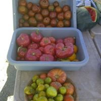 Contented Acres Produce