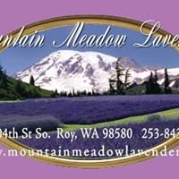 Mountain Meadow Lavender Farm
