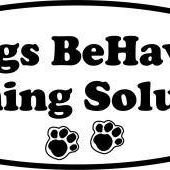 Dogs BeHaven Training Solutions - Bolton, On