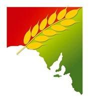 Grain Producers SA
