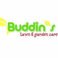 Buddin's Lawn and garden