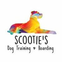 Scootie's Dog Training and boarding