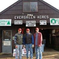 Evergreen Acres Tree Farm and Nursery