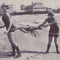McKay Shrimp & Crab Gear