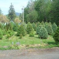 Leland Valley Tree Farm