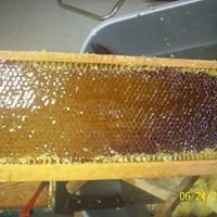 Mike's Local Honey and Produce