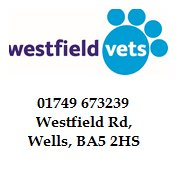 Westfield Vets