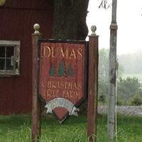 Dumas Christmas Tree Farm