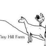 Tiny Hill Farm