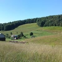Lohr Farms