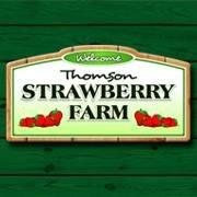 Thomson Strawberry Farm