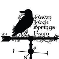 Raven Rock Springs Farm