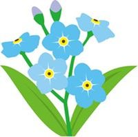 Forget-me-not Designs