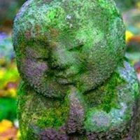 Guelph Insight Meditation