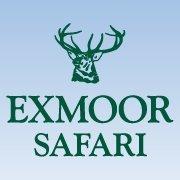 Exmoor Safari