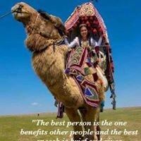Camel Company of Canada