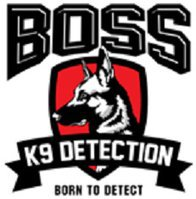 Boss K9 Detection