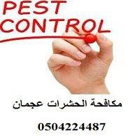 Pest Control Ajman - مكافحة الحشرات عجمان