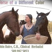 Horse of a Different Color/Robin Baire