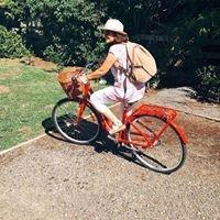 Red Bicycle Martinborough