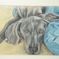 Pets in pastels