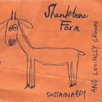 Shankbone Farm