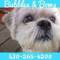 Bubbles & Bows Pet Salon