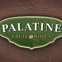 Palatine Roses