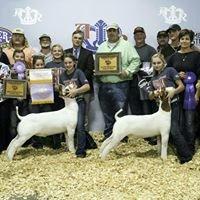 Miller Boer Goats