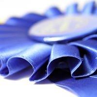 Blue Ribbon Auction Services