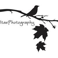 CaptaVitae Photography