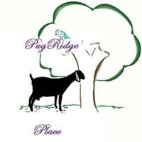 PugRidge Place Goat Milk Soap and Lotion