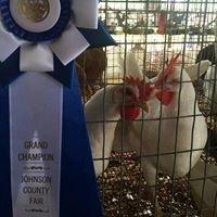 Johnson County Fair - Arkansas