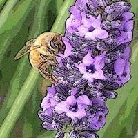 Northwest Regional Lavender Conference