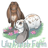 Lily Patch Farm Rabbitry