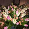 BC Floral & Gifts/ Bloomin' Crazy Floral -Gifts -Events