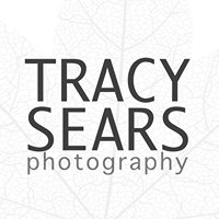 Tracy Sears Photography