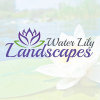 Waterlily Landscapes