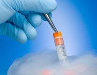 Embryo Banking Australia