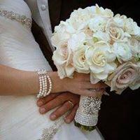 Terri Krisavage Weddings