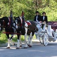 Rockinghorse Carriage
