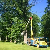 County Wide Tree Service